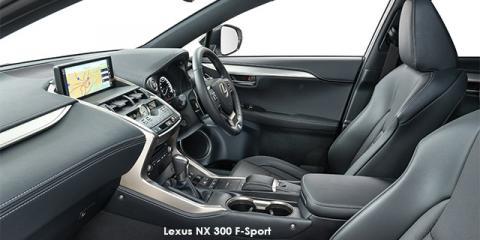 Lexus NX 300 F-Sport - Image credit: © 2019 duoporta. Generic Image shown.