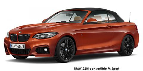 BMW 220i convertible M Sport sports-auto - Image credit: © 2020 duoporta. Generic Image shown.