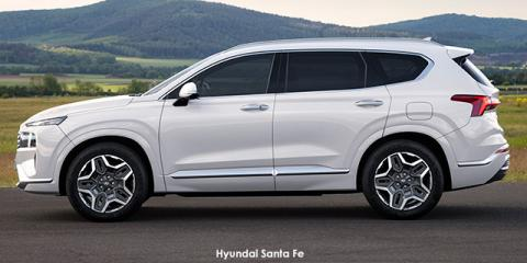 Hyundai Santa Fe 2.2D Executive - Image credit: © 2021 duoporta. Generic Image shown.