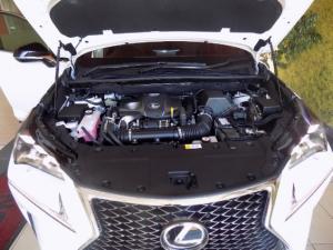 Lexus NX 2.0T F-SPORT/300 F-SPORT - Image 18