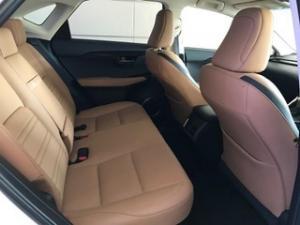 Lexus NX 2.0T EX/300 EX - Image 7