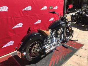 Indian Scout - Image 3