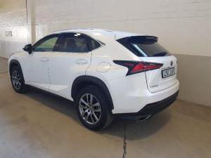 Lexus NX 2.0T EX/300 EX - Image 4