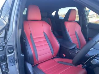 Lexus NX 300 F-SPORT