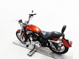 Harley Davidson Sportster 1200 Custom - Image 5