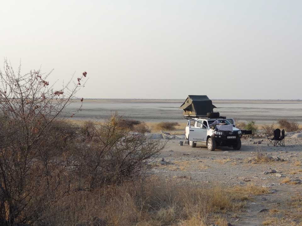 12 Day safari to Botswana