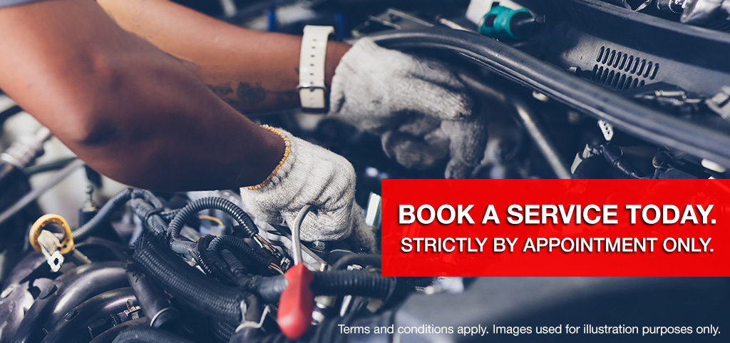 Book Your Service Now Appointment Only