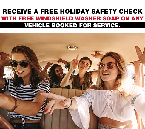 Receive a FREE holiday safety check with free windshield washer soap on any vehicle booked for service.